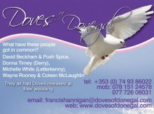 Doves of Donegal Aad